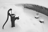 """""""Jern ruster når det ikke blir brukt, stillestående vann mister sin klarhet og fryser til i kulde. På samme måte undergraver passivitet sinnets styrke."""" Leonardo da Vinci"""