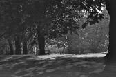 """""""Du vil ikke finne det i noen park eller by - et monument til ære for en komité."""" Victoria Pasternak"""