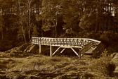 """""""Den som ikke vil tilgi andre, ødelegger den broen han selv en gang må over."""" Francis Bacon"""