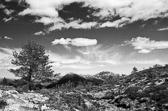 """""""Mål ikke fjellets høyde før du har nådd toppen. Da skal du se hvor lavt det var."""" Dag Hammarskjöld"""