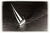 """""""Seileren lærer ikke å rope på medvind, han lærer å seile i motvind."""" Ordtak"""