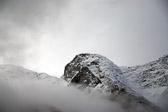 """""""I naturen ruver fjellene - i hjemmet bagatellene."""" Eivind Berggrav"""