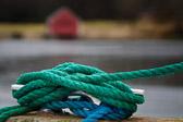 Når du kommer til enden av tauet, knytt en knute og hold deg fast. Thomas Jefferson